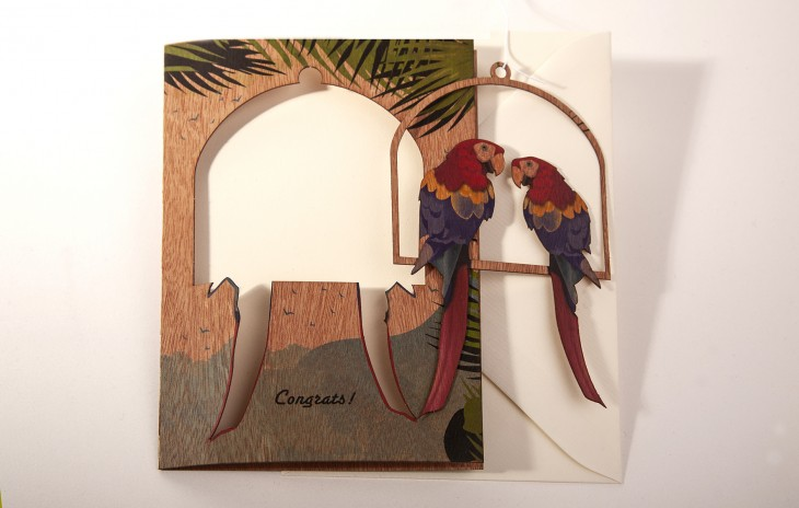 Parrots - Greeting Card